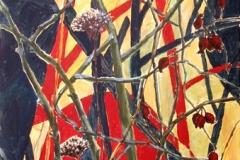 Trockenblumen gefunden